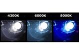 2 ampoules D2S Xenon 6000k 12v 35 watts - GO26326